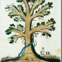 A Foreign Tree